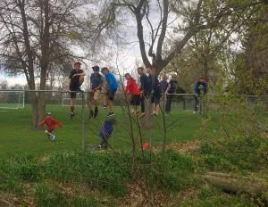 kids-fence